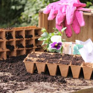 Gardening Naturally Reviews | 26th February 2020