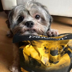 Devoted Pet Foods Reviews | 11th March 2020