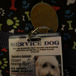 serviceanimalbadge-com 5 star review on 25th September 2020