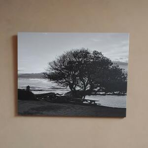 Easy Canvas Prints 5 star review on 11th November 2020