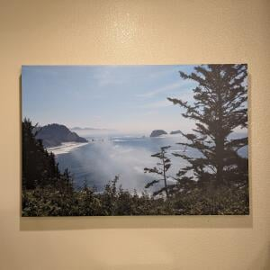 Easy Canvas Prints 5 star review on 16th November 2020