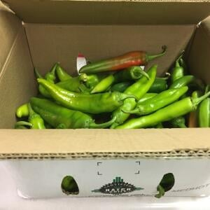 The Fresh Chile Company 5 star review on 23rd February 2021