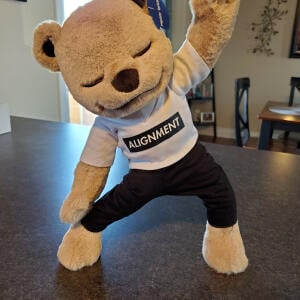 Meddy Teddy 5 star review on 9th November 2020