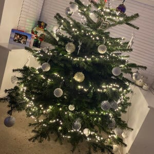Christmas Trees Liverpool 5 star review on 13th December 2020