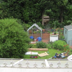 Elloughton Greenhouses 5 star review on 16th July 2020