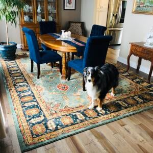 Incredible Rugs and Decor 5 star review on 10th January 2019