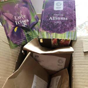 Farmer Gracy Flower Bulbs 5 star review on 20th November 2020