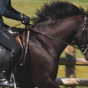 Aztec Diamond Equestrian 5 star review on 3rd June 2021