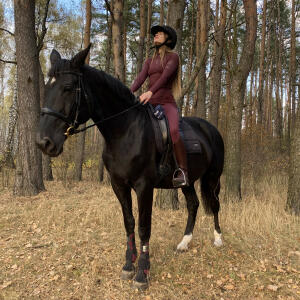 Aztec Diamond Equestrian 5 star review on 16th October 2020