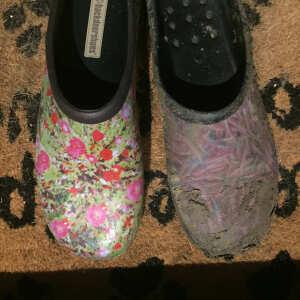 Backdoorshoes Ltd 5 star review on 14th December 2020