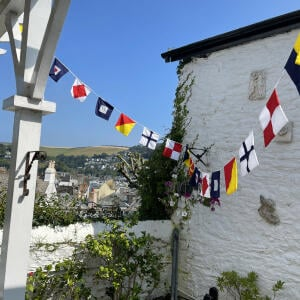 The Cotton Bunting 5 star review on 26th August 2021