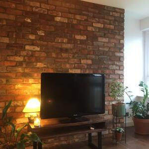Reclaimed Brick-Tile 5 star review on 7th May 2021