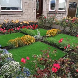 LazyLawn 5 star review on 1st September 2020