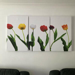 Wallart-Direct 5 star review on 12th March 2021