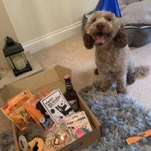 Postman Pooch 5 star review on 16th July 2020