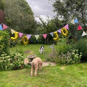 The Cotton Bunting 5 star review on 16th August 2021