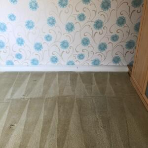 Carpet Bright UK 5 star review on 4th March 2021