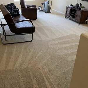 Carpet Bright UK 5 star review on 20th September 2020