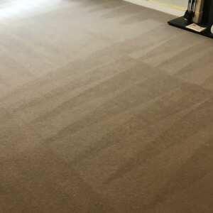 Carpet Bright UK 5 star review on 21st September 2020