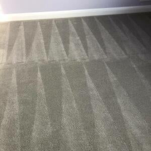 Carpet Bright UK 5 star review on 11th February 2021