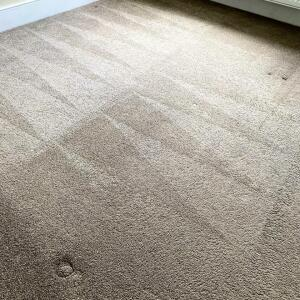 Carpet Bright UK 5 star review on 31st May 2021