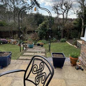 Harrod Horticultural 5 star review on 21st April 2021