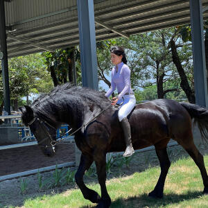 Aztec Diamond Equestrian 5 star review on 30th May 2021