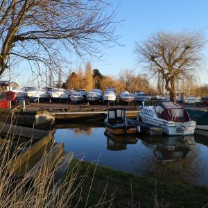 Waveney River Centre 5 star review on 11th February 2019