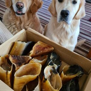 Natural Cornish Pet 5 star review on 9th September 2021