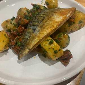 Hamiltons Fish 5 star review on 7th May 2021