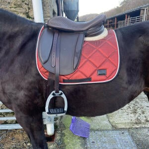 Equiflair Saddlery 5 star review on 5th January 2021