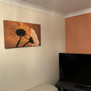 Wallart-Direct 5 star review on 11th February 2021