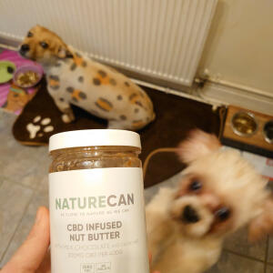 Naturecan 5 star review on 15th December 2020