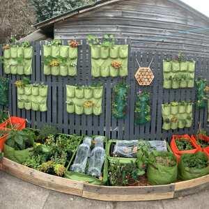 Little Fields Farm 5 star review on 8th June 2021