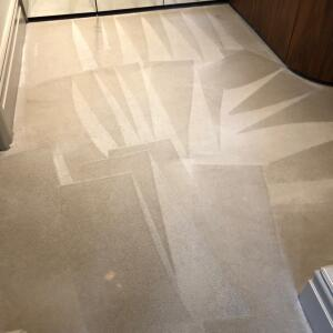CarpetCleaningLondon.com 5 star review on 11th June 2020