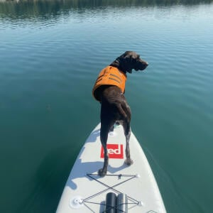 Red Paddle Co 5 star review on 19th July 2021