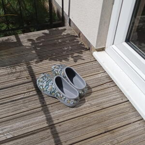 Backdoorshoes Ltd 5 star review on 29th July 2021