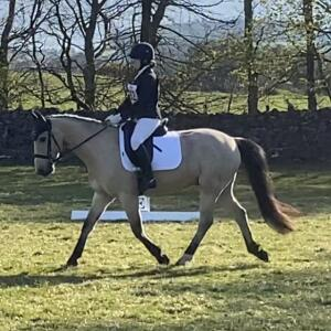 Equiflair Saddlery 5 star review on 4th May 2021