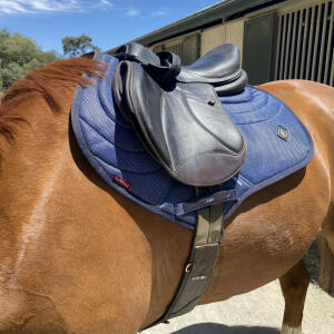 Equiflair Saddlery 5 star review on 13th July 2021