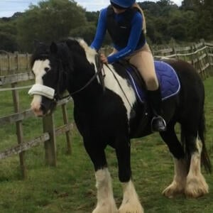 GS Equestrian 5 star review on 23rd August 2020