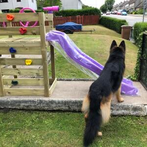 Outdoor Toys 5 star review on 15th July 2020
