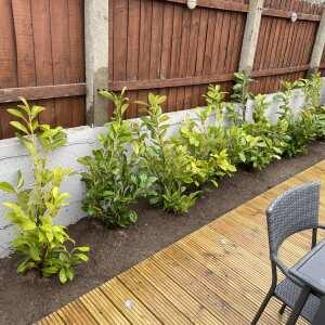 Grasslands Nursery 5 star review on 14th April 2021