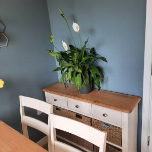 Only Oak Furniture 5 star review on 7th May 2021