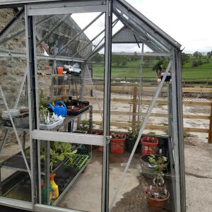 Elloughton Greenhouses 5 star review on 28th May 2020