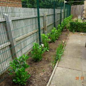 Grasslands Nursery 5 star review on 26th July 2021