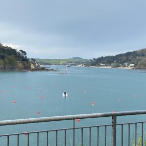 Salcombe Finest 5 star review on 11th May 2021