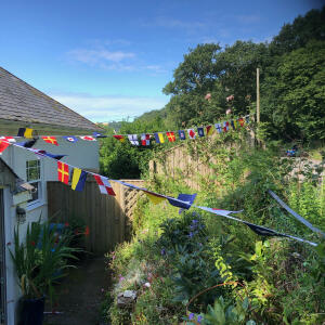 The Cotton Bunting 5 star review on 9th August 2021