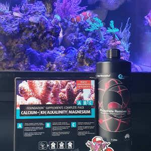 Kraken Corals 5 star review on 7th September 2021