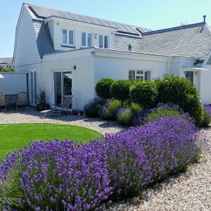 Independent Cottages 5 star review on 21st January 2021