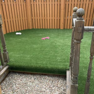 LazyLawn 5 star review on 5th June 2021